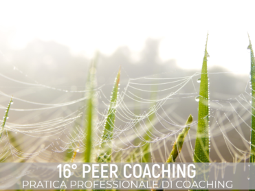 Peer coaching 2021 Fedro