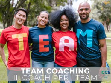 Team Coaching Fedro